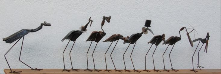 oiseaux d′ici et d′ailleurs..