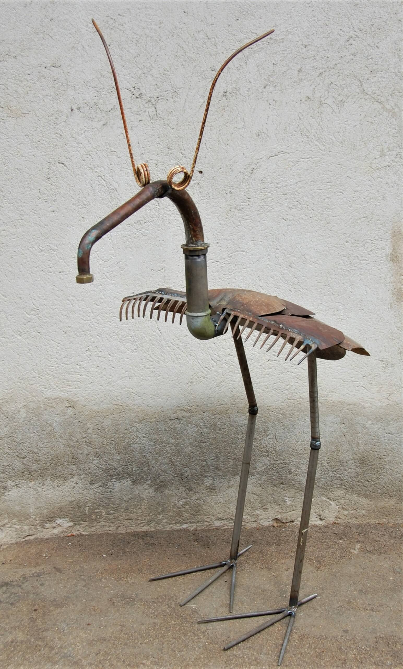 oiseau fourmilier